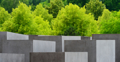 Grid slider issue holocaust