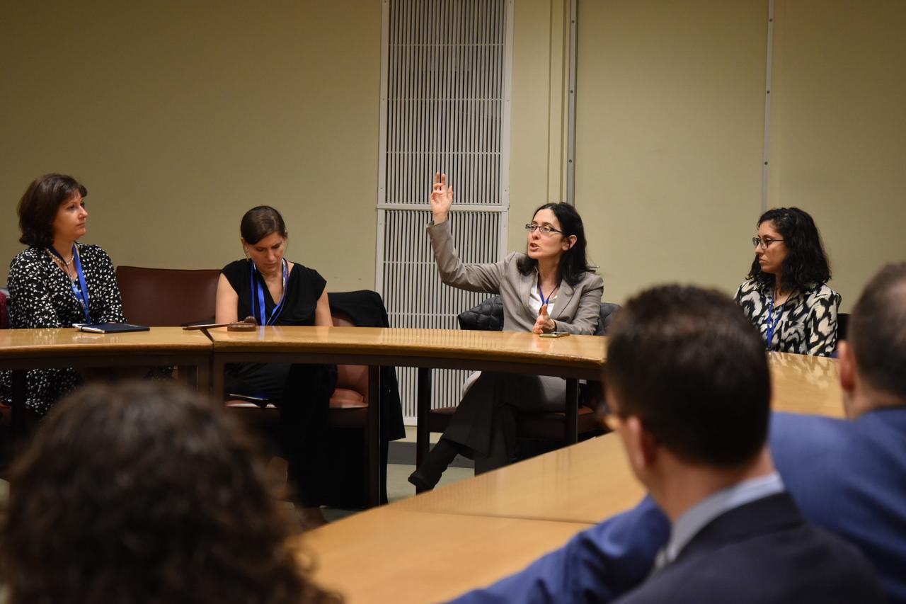 Israel's Deputy Permanent Representative to the UN addresses the JDs at the UN headquarters in New York. (c) World Jewish Congress